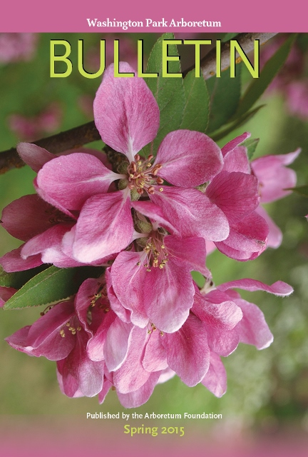 Cover of the spring 2015 issue, showing Malus x adstringens blooming in Crabapple Meadow in mid-April.