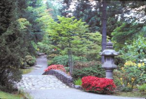 The Seattle Japanese Garden (Photo by Joy Spurr)