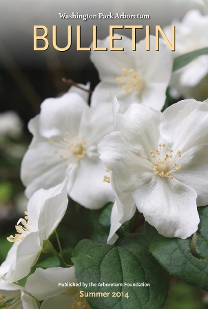 Cover photo: Philadelphus 'Atlas' in the Sorbus Collection. (Niall Dunne)