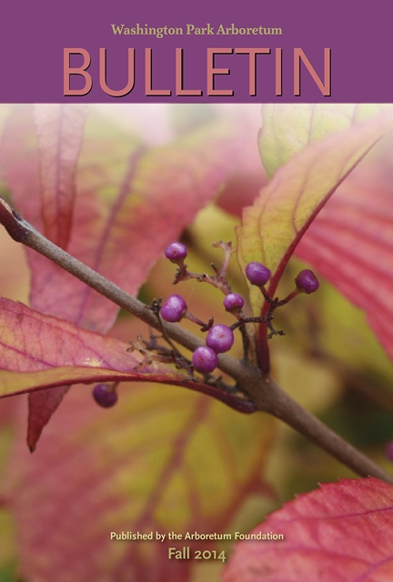 Cover of the fall 2014 issue, showcasing Japanese beautyberry in the Witt Winter Garden.