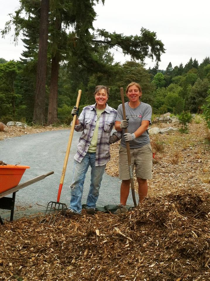 Arboretum Hires New Gardener To Care For Nz Forest The