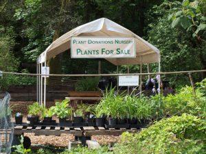 The Plant Donations Nursery at Washington Park Arboretum.