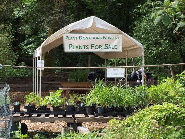 Plant Donations Nursery
