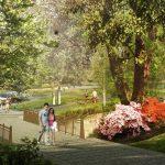 Arboretum Loop Trail Construction Begins