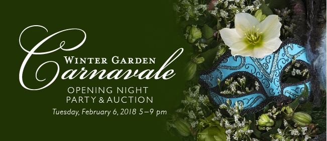 Opening Night Party At The Garden Festival