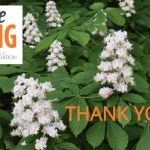 Foundation Receives $35,000 During GiveBIG Spring Appeal