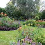 Designing Colorful Island Beds in the Garden