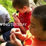Cultivate Curiosity This Giving Tuesday