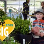 GiveBIG Raises Over $44,000 for the Arboretum!